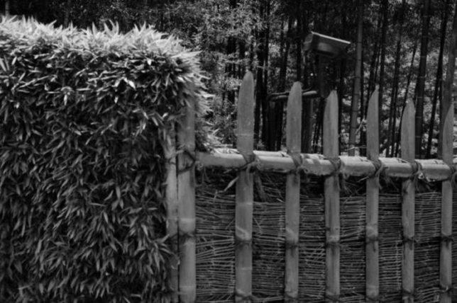 The bamboo fence surrounding Katsura Villa