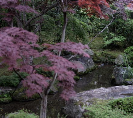 the garden of the Nishimura House in Kyoto