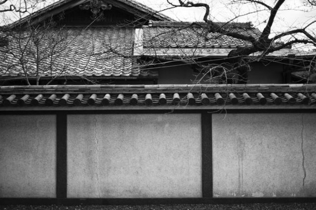 Traditional building of Japan